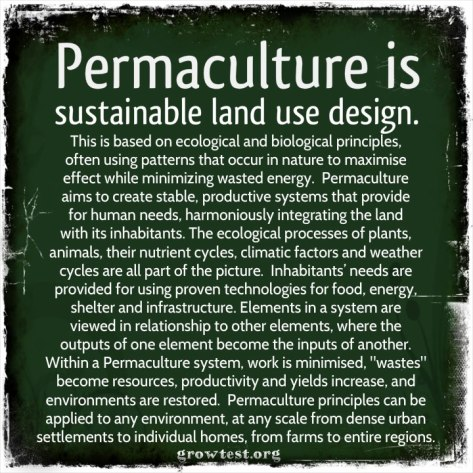 Permaculture_definition