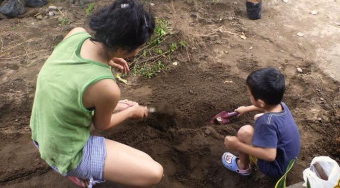 8 Langkah Suburkan Tanah