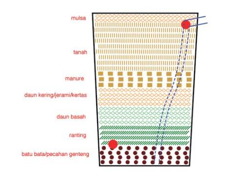 9. Agar kelembaban tanah tidak lekas menguap oleh panas dan supaya rumput tidak mudah tumbuh, tutupi permukaan tanah dengan daun-daun kering, kertas, kompos, atau kerikil. Lapisan pelindung permukaan tanah ini disebut mulsa.