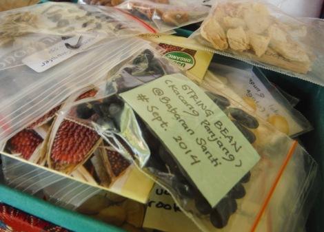 Contoh pemberian label pada koleksi benih. Foto: Bekabuluh.